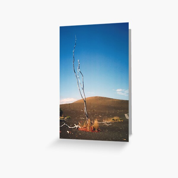 Lonely Tree Greeting Card