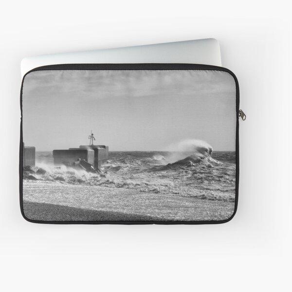Hastings Harbour Arm Laptop Sleeve