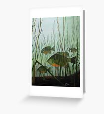 Stacked Blue Gills Greeting Card