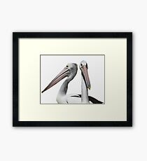Pelican Mugshot Framed Print