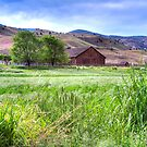 Cant Ranch Barn by CarrieAnn