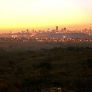 Johanesburg Skyline  by David  Preston