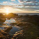 Tidal Pools – Acadia National Park, Maine by Jason Heritage