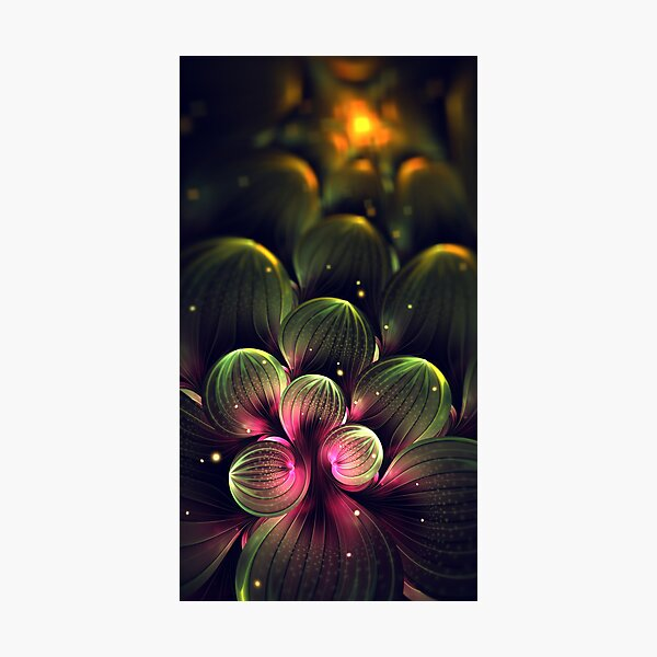 Midnight in Cactus Valley Photographic Print