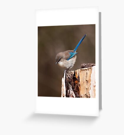 """""""Up Here"""" Greeting Card"""