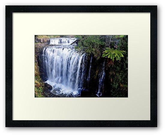 Tas, Guild Falls, Burnie by photoj