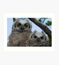 Outgrowing the Nest Art Print