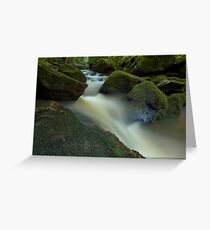 Natures Milky Way Greeting Card
