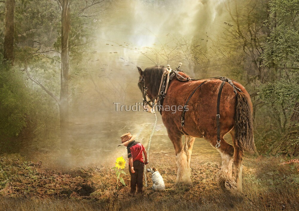 The Seeds We Sow by Trudi's Images