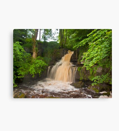 The Colours of Water Canvas Print