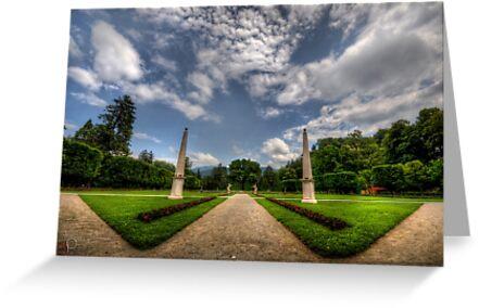 "Garden of ""W"" by Luke Griffin"