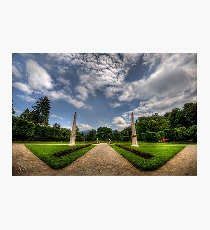 "Garden of ""W"" Photographic Print"