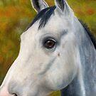 Dapple Grey by Sharon Herbert