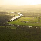 Golden Afternoon - Williams River near Clarence Town, NSW by Daniel Mitchell