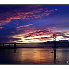 The Golden Forth by Kevin Meldrum