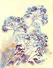 Hogweed by Val Spayne