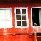 jaipur windows by andreaminerdo
