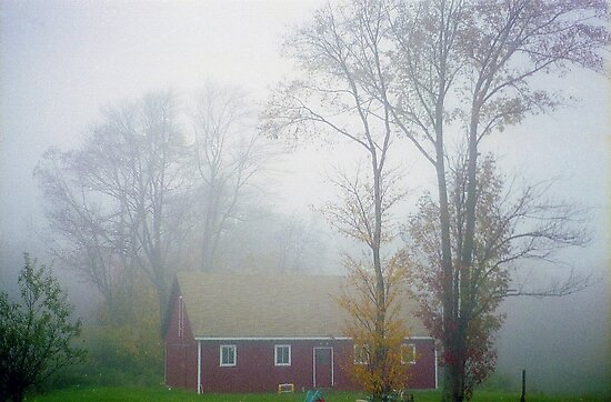 Foggy Afternoon  by Alberto  DeJesus