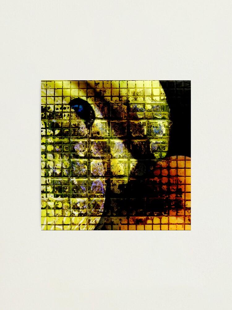 Alternate view of Still Alive ;-) Photographic Print