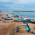 Fishing Boats - Sri Lanka by Dilshara Hill