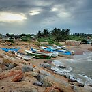 Boats at Rest - Sri Lanka by Dilshara Hill