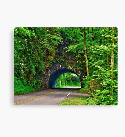 Tunnel to Cades Cove Canvas Print