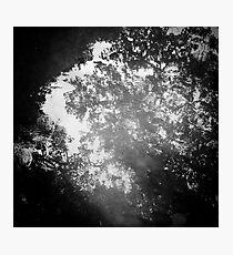 Ripple Photographic Print