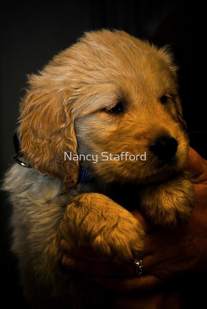 I Am a Puppy by Nancy Stafford