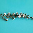 White Tea Tree by Sorcha Whitehorse ©
