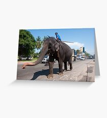 Working Elephant - Sri Lanka Greeting Card