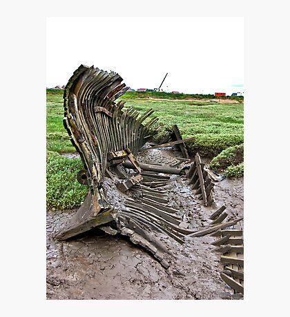 Skeleton Coast Photographic Print