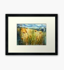 Summer field in country side Framed Print