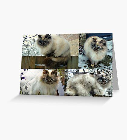 Collage ~Nina~ Greeting Card