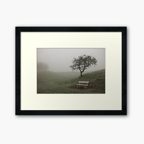 A single bench and tree shrouded in fog Framed Art Print