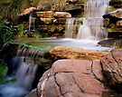 """""""Thorndon Falls"""" by Heather Thorning"""