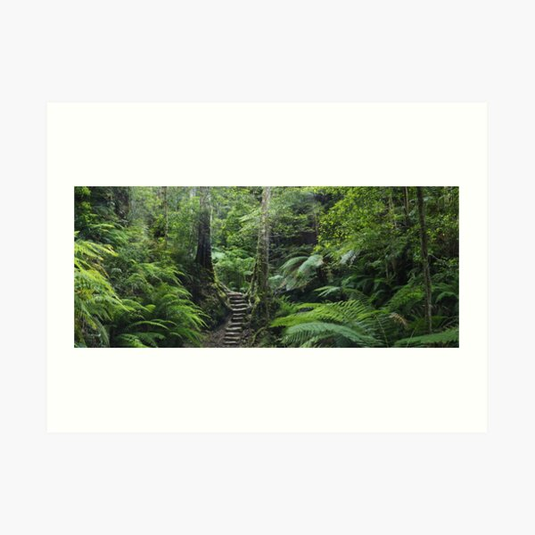 The Fernery, Grand Canyon. Art Print