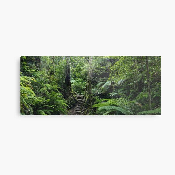 The Fernery, Grand Canyon. Metal Print