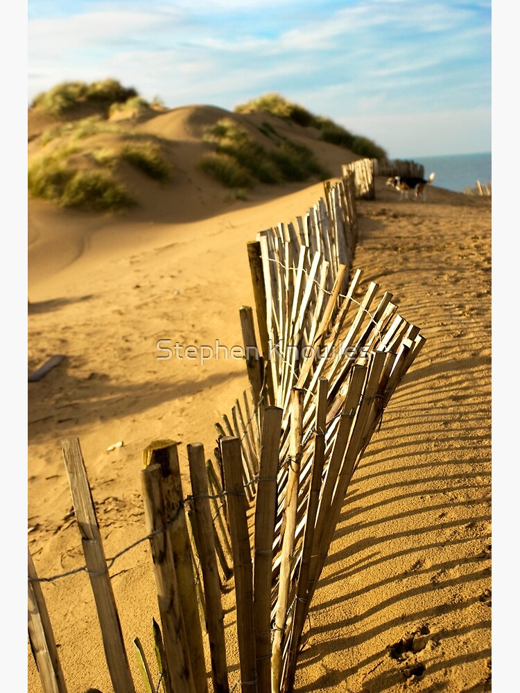 Fence at Formby Beach by stephenknowles