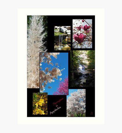 springtime in appalachia Art Print