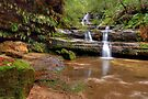 Terrace Falls  #4 by Terry Everson