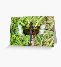 Black and White Dragonfly Greeting Card