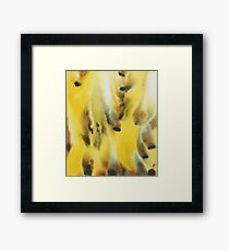 Feather Touch Framed Print