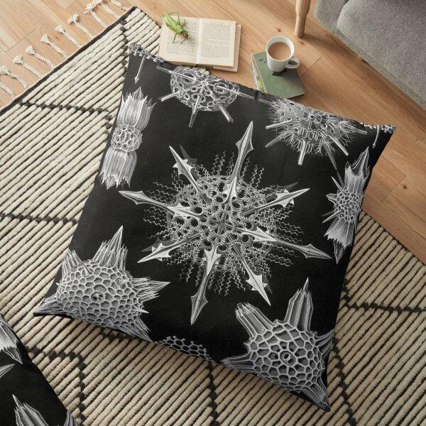 Haeckel Acanthophracta Drawing Floor Pillow