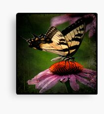 TTV-Water Color Beautiful Butterfly. Canvas Print
