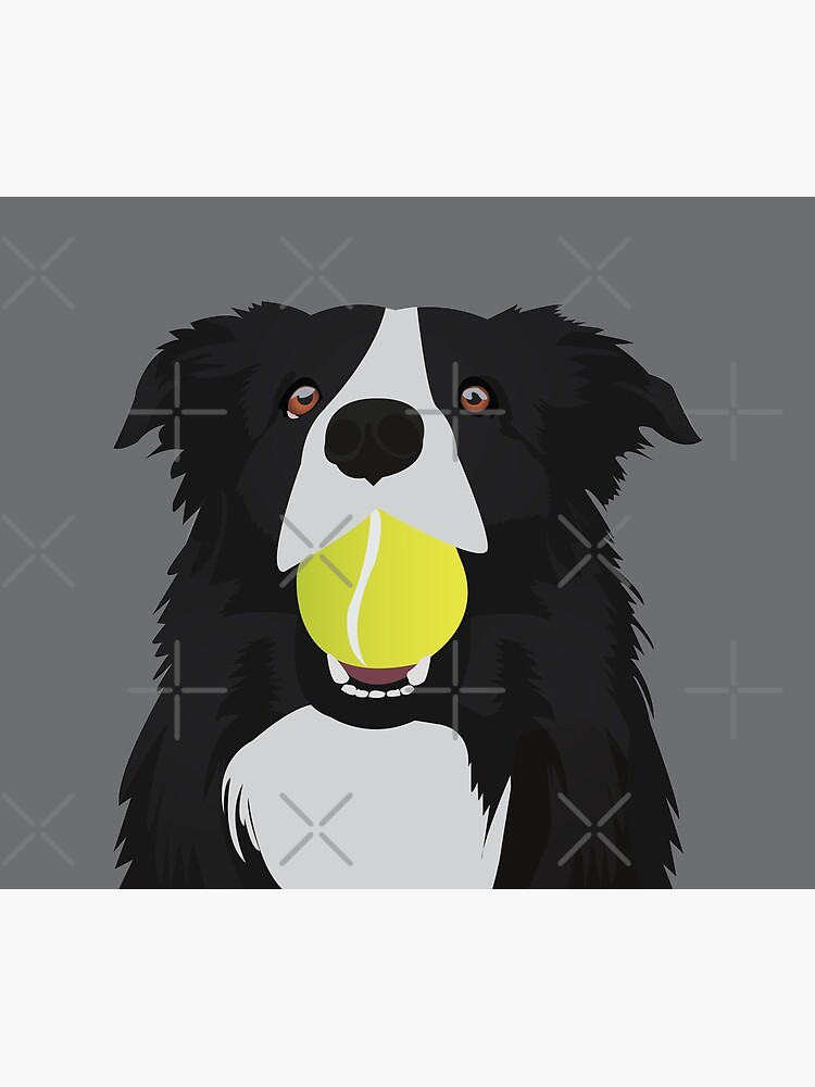 Border Collie with a Tennis Ball by KCPetPortraits