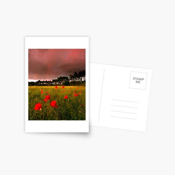 Cross Country Postcard