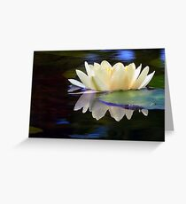 A Light On The Water Greeting Card