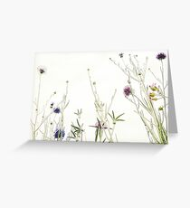 Wild summer blooms... Greeting Card