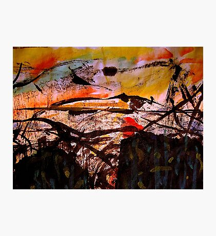 two forests... under a sunset sky Photographic Print