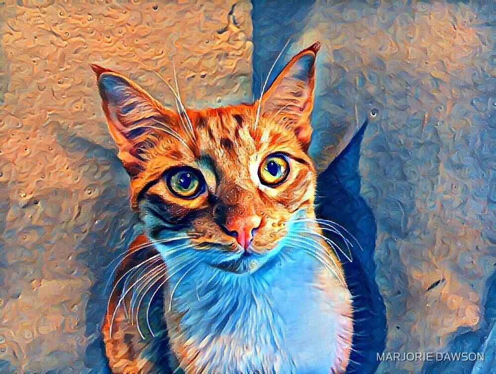 Van Gogh Ginger Cat by MARJORIE DAWSON